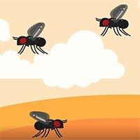 Vì sao ruồi giấm nhiều và rất khó bị tiêu diệt?