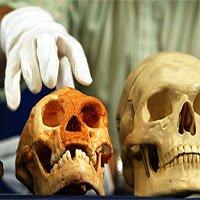 Vì sao tổ tiên loài người chiến thắng trong cuộc đua tiến hóa?