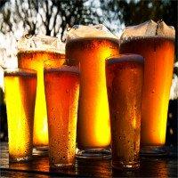 Video: Bia được làm như thế nào?