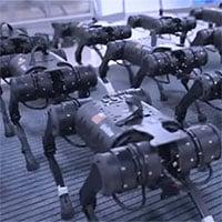 Video: Binh đoàn robot