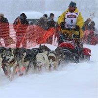 Video: Iditarod - Cuộc đua chó kéo xe trượt tuyết khắc nghiệt nhất thế giới