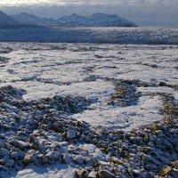 Video: Mầm bệnh nguy hại ẩn trong lớp băng Bắc Cực đang tan chảy