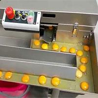 Video: Máy tách lòng đỏ với lòng trắng trứng không tì vết