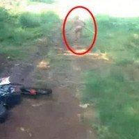 Video: Một chú lùn bị phát hiện và bỏ chạy trong khu rừng Indonesia