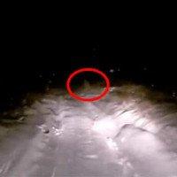 Video: Phát hiện sinh vật bí ẩn giống Người tuyết tại vùng núi hẻo lánh?