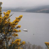 Video: Quái vật hồ Loch Ness ngóc đầu bơi gần thuyền chở khách