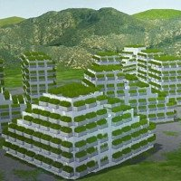 Video: Thành phố rừng hấp thụ 10.000 tấn CO2 mỗi năm
