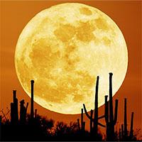 Việt Nam đón siêu trăng vào rằm tháng Giêng