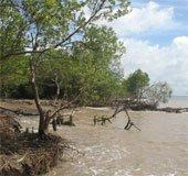 Việt Nam được hỗ trợ để thích ứng biến đổi khí hậu