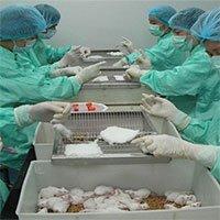 Việt Nam thử nghiệm vaccine Covid-19 trên người vào 2021
