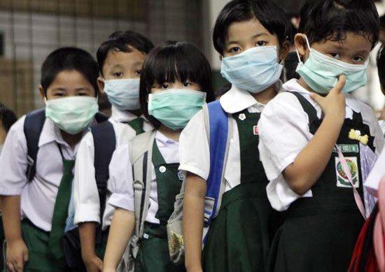 Virus H5N1 biến đổi có thể lây từ lợn sang người