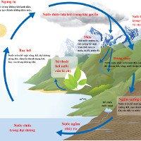 Vòng tuần hoàn của nước trong tự nhiên