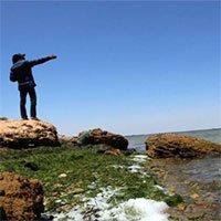 WWF: Địa Trung Hải sắp trở thành