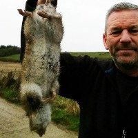 Xác chuột dài nửa mét khiến người Anh hoang mang