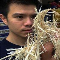 Ý tưởng sáng tạo độc đáo: Biến lông gà thành thức ăn